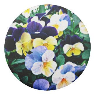 Borracha Viola bonita