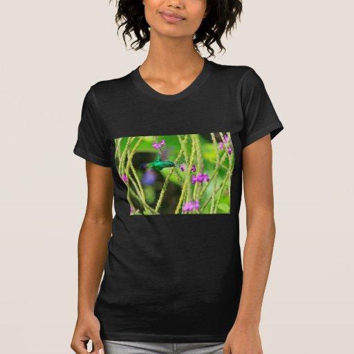 Borrão pairando do colibri t-shirt