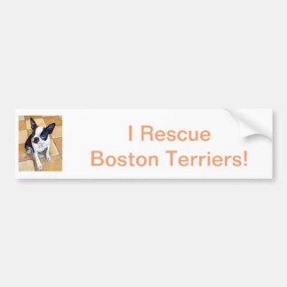 Boston Terrier Adesivo Para Carro