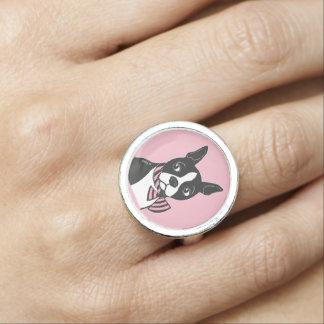 Boston Terrier com anel do rosa do laço