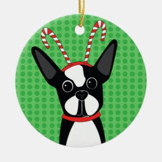 Boston Terrier com o ornamento do Headband do