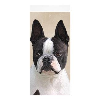 Boston Terrier Panfletos Informativos Personalizados