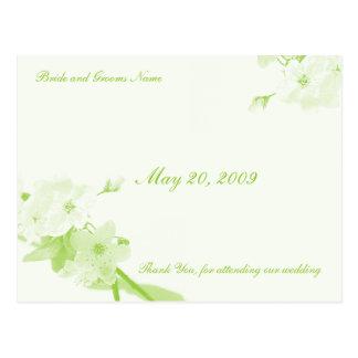 Botânico (cartões de agradecimentos) cartão postal