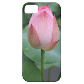 Botão chinês cor-de-rosa do lírio de água capa para iPhone 5