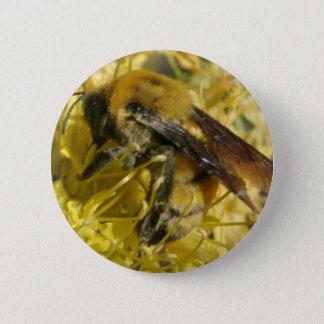 Botão da abelha bóton redondo 5.08cm