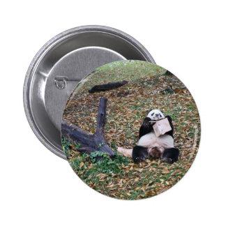 Botão da panda bóton redondo 5.08cm