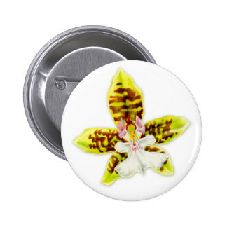 Botão das belas artes da flor da orquídea bóton redondo 5.08cm