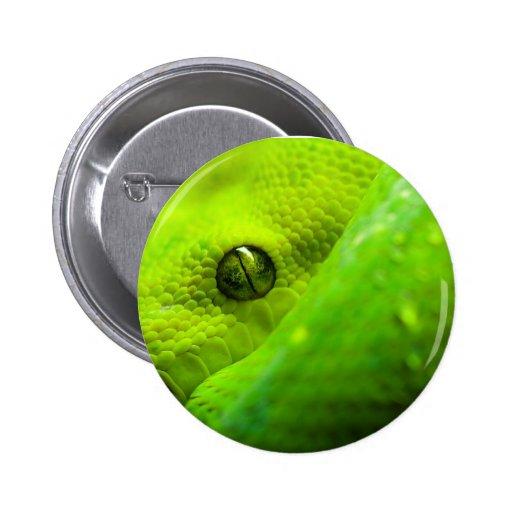 Botão do olho da serpente boton