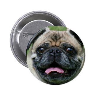 Botão do Pug Boton