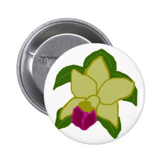 Botão esverdeado da tartaruga de mar da orquídea botons