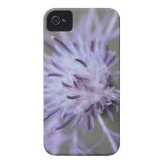Botão selvagem roxo capinhas iPhone 4