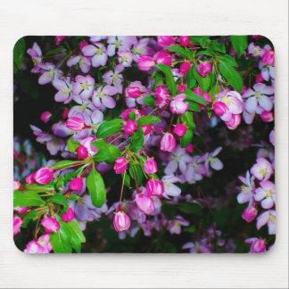 Botões cor-de-rosa pequenos…. mouse pads