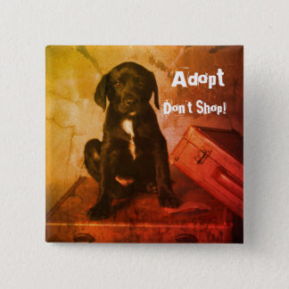 Bóton Quadrado 5.08cm Adopt não compra o filhote de cachorro