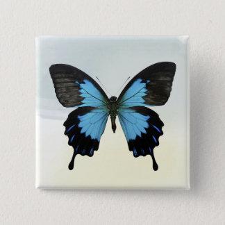Bóton Quadrado 5.08cm Borboleta bonita do preto azul na aguarela