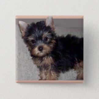 Bóton Quadrado 5.08cm Botão do filhote de cachorro do yorkshire terrier