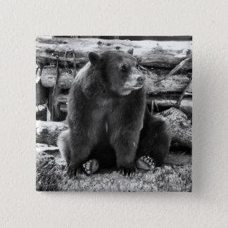 Bóton Quadrado 5.08cm Botão do urso
