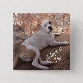 Bóton Quadrado 5.08cm Botão irresistível do quadrado da adopção do cão