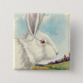 Bóton Quadrado 5.08cm Campo branco do albino do coelhinho da Páscoa