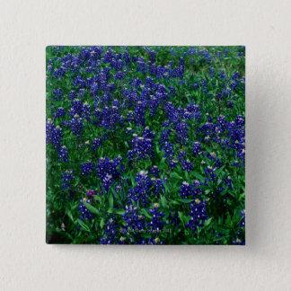 Bóton Quadrado 5.08cm Campo de Bluebonnets de Texas