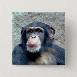 Bóton Quadrado 5.08cm Chimpanzé