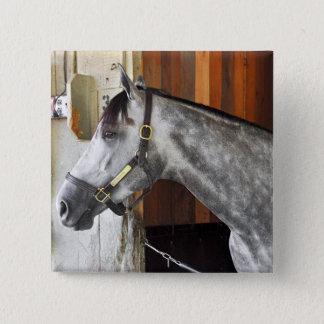 Bóton Quadrado 5.08cm Destin - abrigo do cavalo