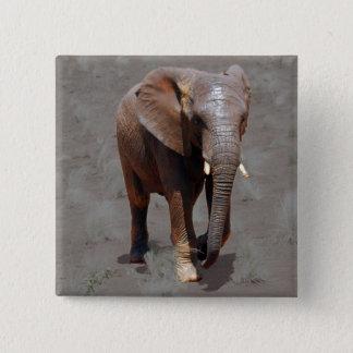 Bóton Quadrado 5.08cm Elefante africano