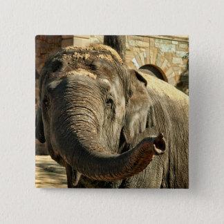 Bóton Quadrado 5.08cm Elefante que aponta para a frente com o tronco