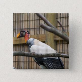 Bóton Quadrado 5.08cm Fotografia do abutre