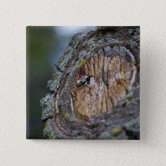 Bóton Quadrado 5.08cm Fotografia do coto de árvore