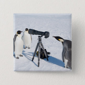 Bóton Quadrado 5.08cm Fotógrafo do pinguim - botão