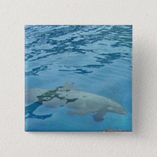 Bóton Quadrado 5.08cm Golfinho de sorriso