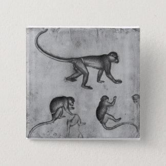 Bóton Quadrado 5.08cm Macacos, do álbum de Vallardi