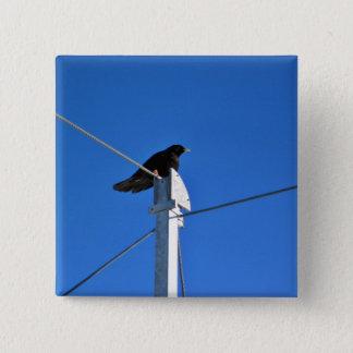 Bóton Quadrado 5.08cm Pássaro preto em um cargo