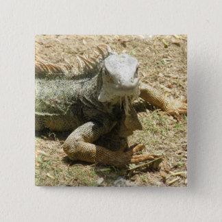 Bóton Quadrado 5.08cm Pin do quadrado do lagarto da iguana