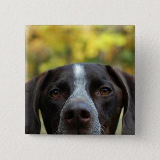 Bóton Quadrado 5.08cm Quem cão de Dat?
