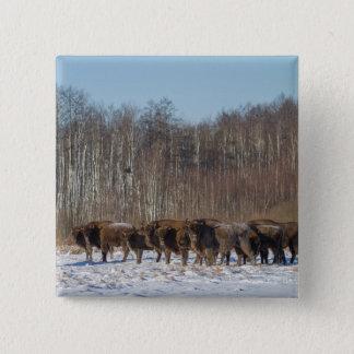 Bóton Quadrado 5.08cm Rebanho do bisonte