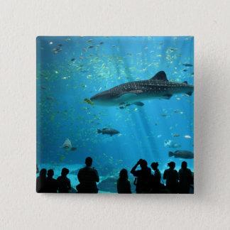 Bóton Quadrado 5.08cm Tubarão de baleia masculino