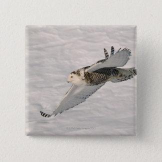 Bóton Quadrado 5.08cm Um deslizamento nevado da coruja