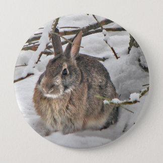 Bóton Redondo 10.16cm Botão do coelho
