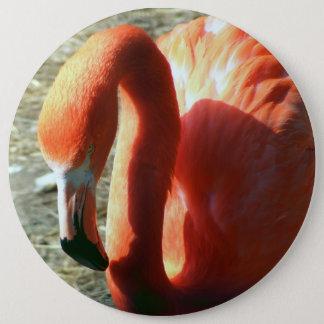 Bóton Redondo 15.24cm Flamingo