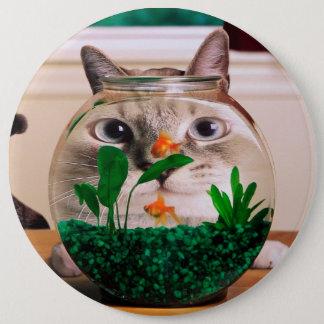 Bóton Redondo 15.24cm Gato e peixes - gato - gatos engraçados - gato