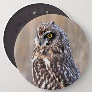 Bóton Redondo 15.24cm Retrato de uma coruja Curto-Orelhuda