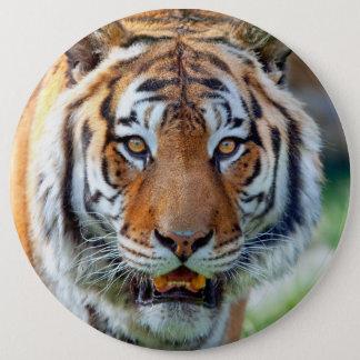 Bóton Redondo 15.24cm Salvar o botão dos tigres
