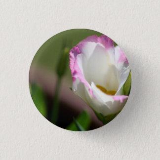 Bóton Redondo 2.54cm Bonito no pino cor-de-rosa