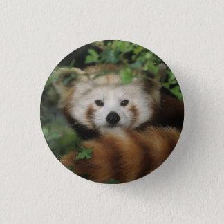 Bóton Redondo 2.54cm Botão - panda vermelha