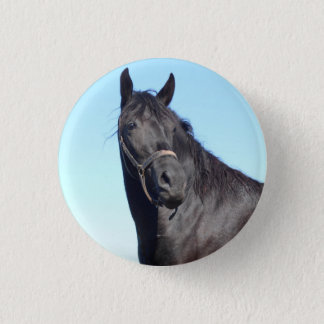 Bóton Redondo 2.54cm Cavalo preto e o céu azul
