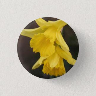 Bóton Redondo 2.54cm Crachá do Daffodil