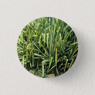 Bóton Redondo 2.54cm Pinho de parafuso do verde do botão da planta