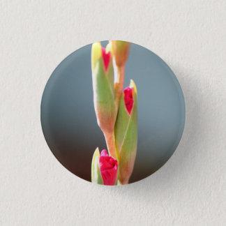 Bóton Redondo 2.54cm Pino contente dos botões