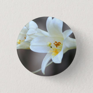 Bóton Redondo 2.54cm Pino de Bloomin Lillies